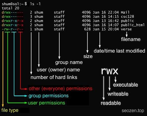 Linux文件权限