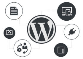 WordPress开发