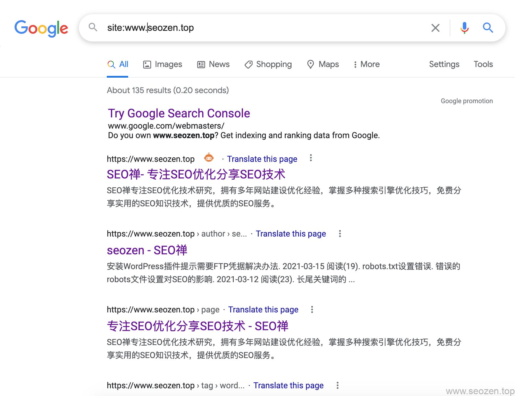 SEO禅谷歌site结果