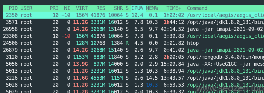 Linux-htop-process-information